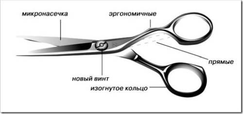 Преимущества эргономичных ножниц