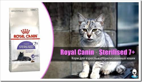 Корм Royal Canin Sterilised