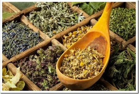 Самые популярные травяные чаи